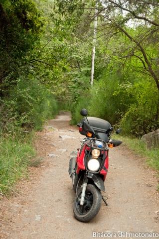 Estrecho camino que después se convirtió sendero para trecking