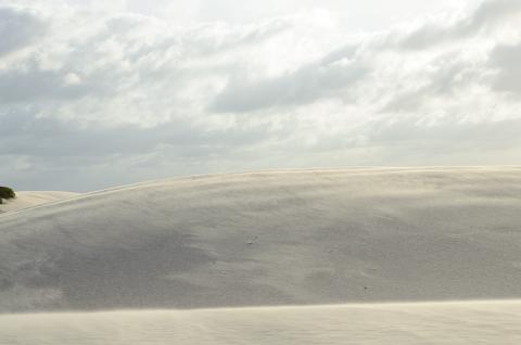 Viento en las dunas