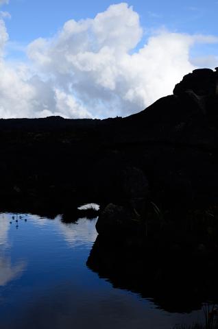 Agua en el roraima