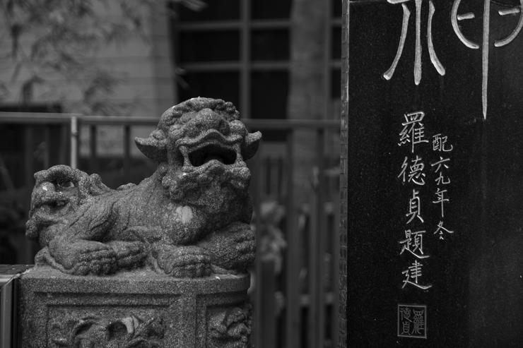 Perro en Tin Hau Temple