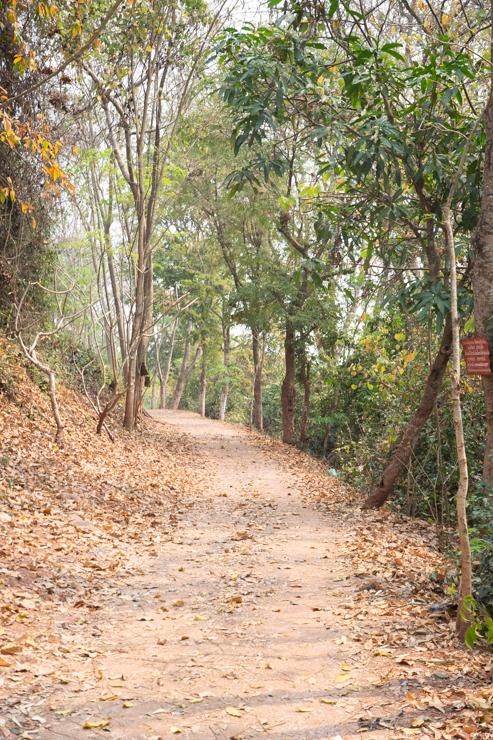 Camino hacia el templo del morro tutelar, Phousi