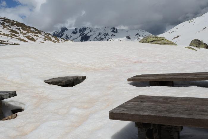 Mesitas cubiertas por la nieve