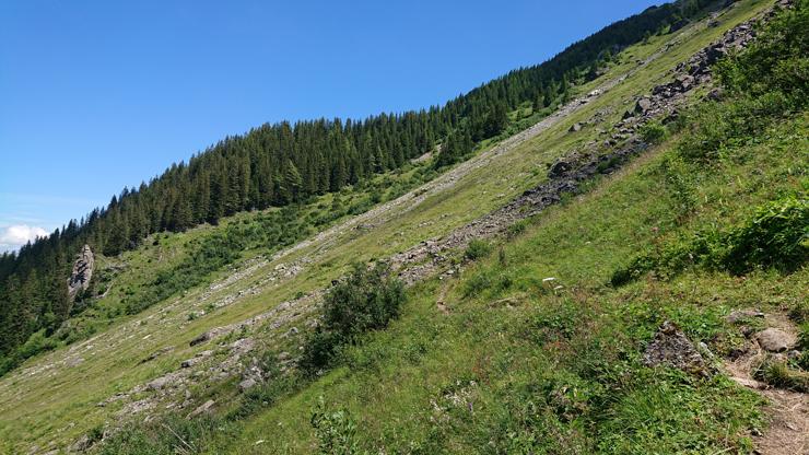 Camino hacia Niesen en la parte que es difícil de reconocer