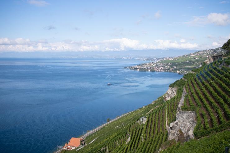 Las terrazas de Lavaux con Lausanne de fondo