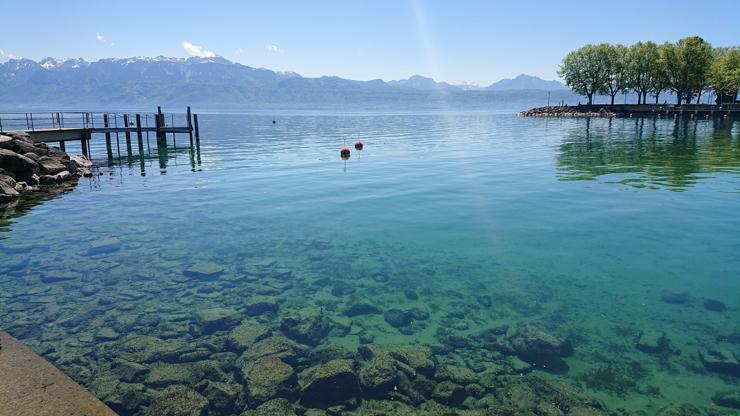 El puerto, el increible lago Lemán y las montañas de fondo