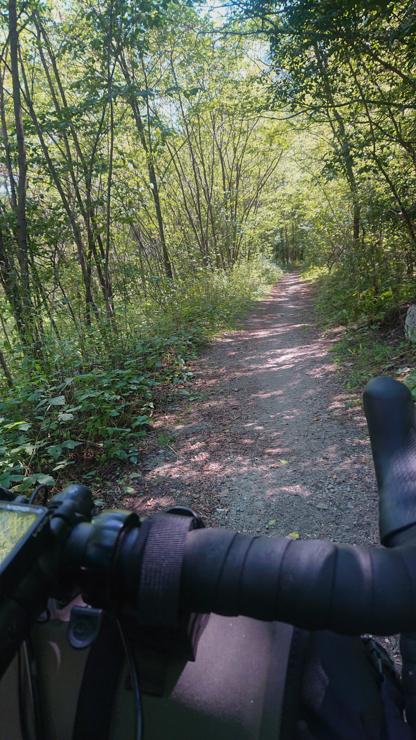 Caminito entre bosques en el ticino