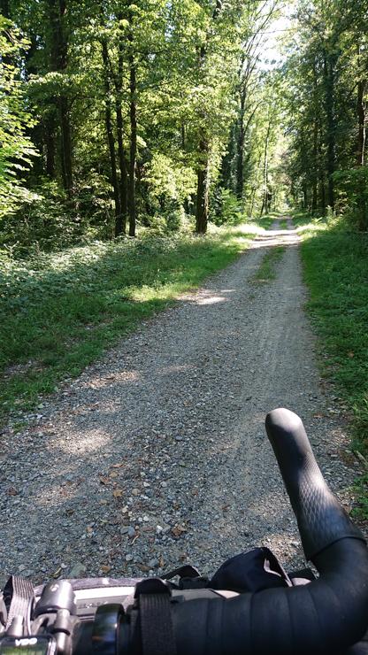 Camino llegano a Bellinzona